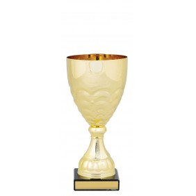 Metal Trophy Cups C0249 - Trophy Land