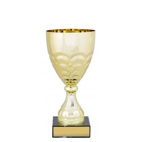 Metal Trophy Cups C0250 - Trophy Land
