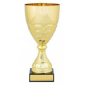 Metal Trophy Cups C0252 - Trophy Land