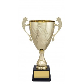 Metal Trophy Cups C0254 - Trophy Land
