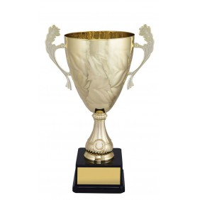 Metal Trophy Cups C0255 - Trophy Land