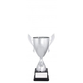 Metal Trophy Cups C0266 - Trophy Land