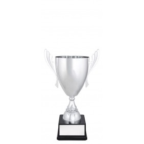 Metal Trophy Cups C0267 - Trophy Land