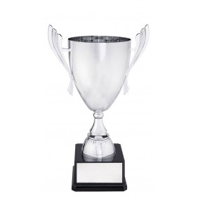 Metal Trophy Cups C0270 - Trophy Land
