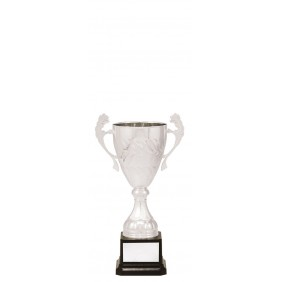 Metal Trophy Cups C0278 - Trophy Land