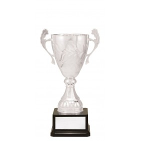 Metal Trophy Cups C0281 - Trophy Land