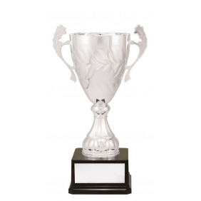 Metal Trophy Cups C0282 - Trophy Land