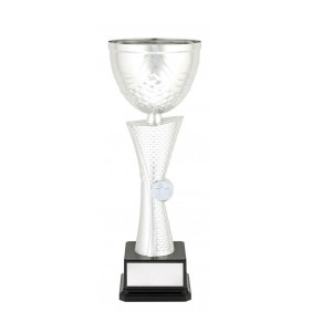 Metal Trophy Cups C0296 - Trophy Land