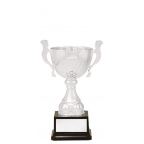Metal Trophy Cups C0319 - Trophy Land