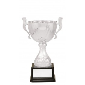 Metal Trophy Cups C0320 - Trophy Land