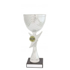 Metal Trophy Cups C0340 - Trophy Land