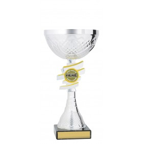 Metal Trophy Cups C0349 - Trophy Land