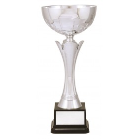 Metal Trophy Cups C0365 - Trophy Land