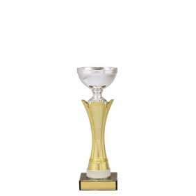 Metal Trophy Cups C0397 - Trophy Land