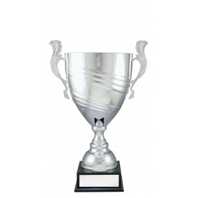 Metal Trophy Cups C0462 - Trophy Land