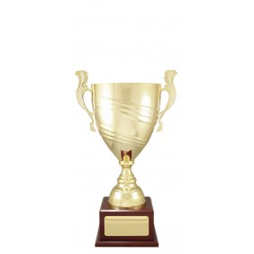 Metal Trophy Cups C0471 - Trophy Land