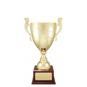 Metal Trophy Cups C0472 - Trophy Land