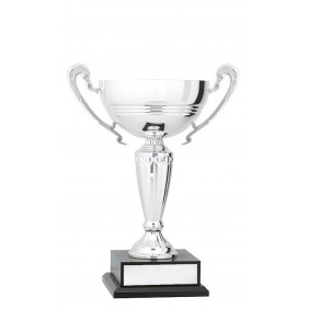 Metal Trophy Cups C0475 - Trophy Land