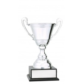 Metal Trophy Cups C0478 - Trophy Land