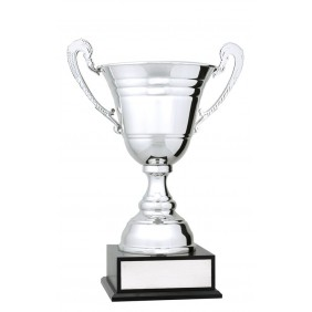 Metal Trophy Cups C0479 - Trophy Land