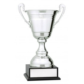Metal Trophy Cups C0480 - Trophy Land