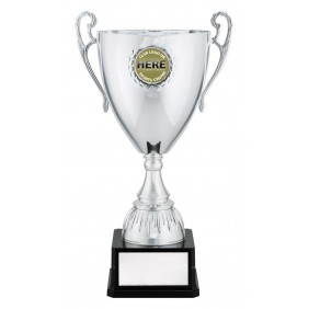 Metal Trophy Cups C0481 - Trophy Land