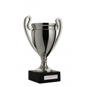 Budget Cups C16-3008 - Trophy Land