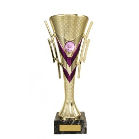 Colourful Cups C16-3202 - Trophy Land