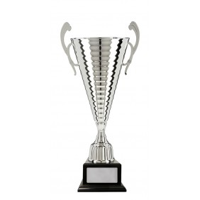 Metal Trophy Cups C18-5323 - Trophy Land