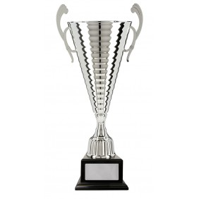 Metal Trophy Cups C18-5324 - Trophy Land