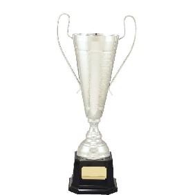 Metal Trophy Cups C5026 - Trophy Land