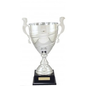 Metal Trophy Cups C7005 - Trophy Land