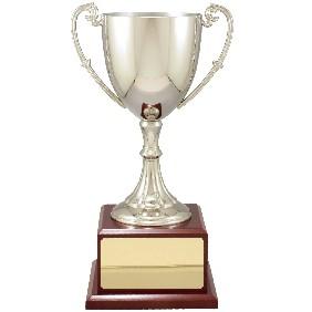 Metal Trophy Cups C7038 - Trophy Land