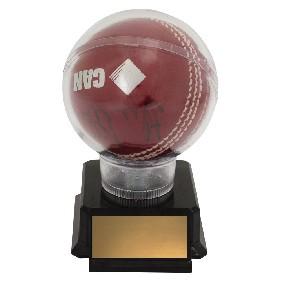 Cricket Trophy CH125 - Trophy Land