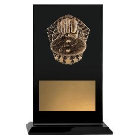 Martial Arts Trophy CKG245C - Trophy Land