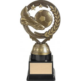 Soccer Trophy FT104C - Trophy Land