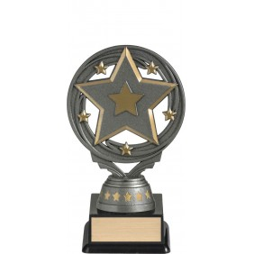 Trivia Trophy FT295A - Trophy Land
