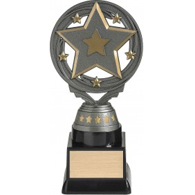 Trivia Trophy FT295C - Trophy Land