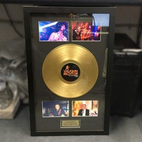 Framing Gallery Gold Record Frame - Trophy Land