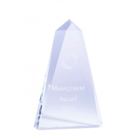 Budget Awards IC01B - Trophy Land