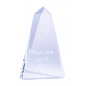 Budget Awards IC01C - Trophy Land