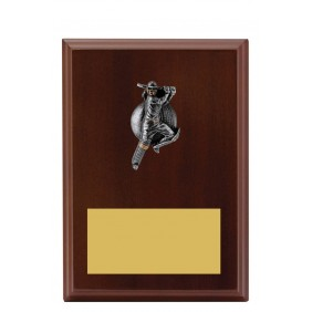 Cricket Trophy LPF416B - Trophy Land