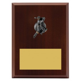 Cricket Trophy LPF441C - Trophy Land