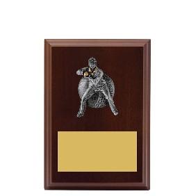 Cricket Trophy LPF491A - Trophy Land