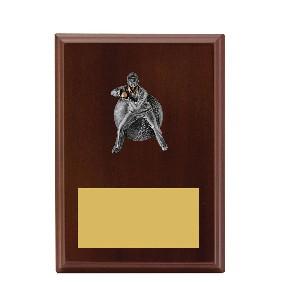 Cricket Trophy LPF491B - Trophy Land