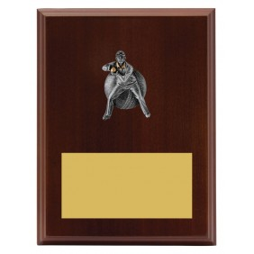 Cricket Trophy LPF491C - Trophy Land