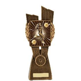 Cricket Trophy LR011C - Trophy Land