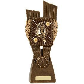 Cricket Trophy LR011D - Trophy Land