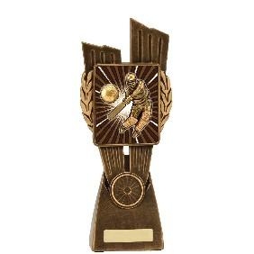 Cricket Trophy LR014C - Trophy Land