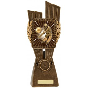 Cricket Trophy LR014D - Trophy Land